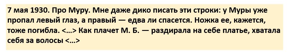 Строчки из дневника К.И. Чуковского.