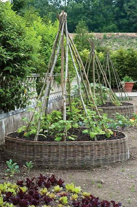 Необычный поднятый сад для вьющихся цветов и овощей.