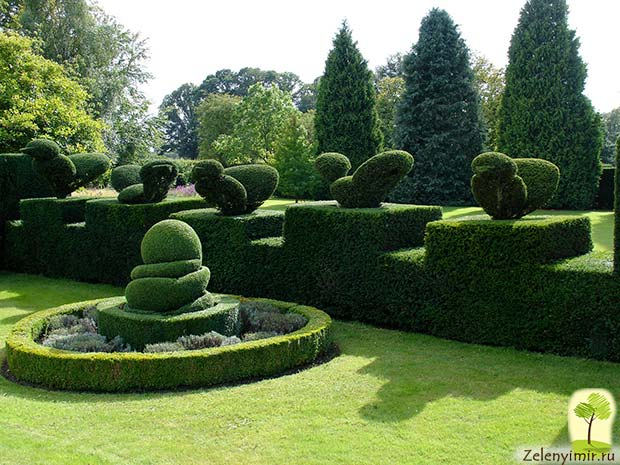 Сад Левенс Холл – самый красивый и самый ароматный сад в мире, Англия - 5