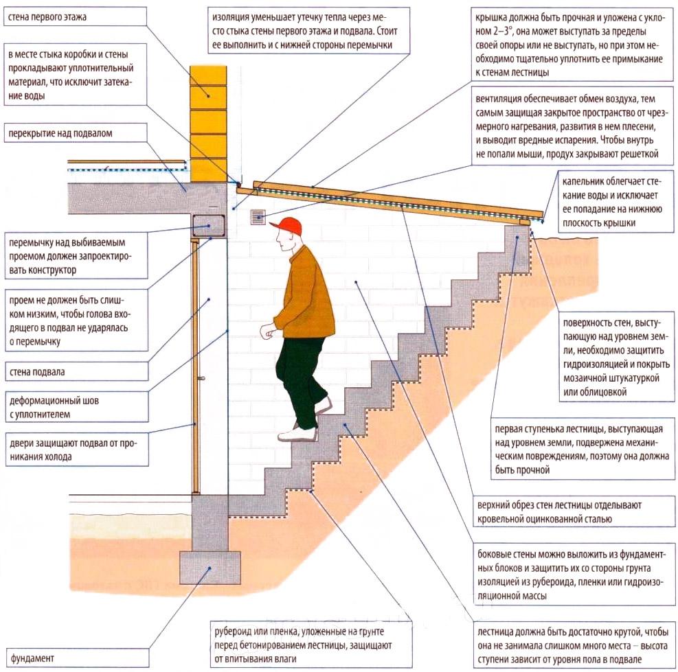 Лестница в подвал частного дома своими руками