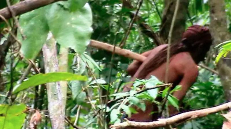 Последний из своего племени: в амазонских джунглях удалось снять индейца, 22 года живущего в одиночестве