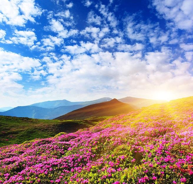 25.04.2016г. День Богини Лели. Весенние практики для увеличения женской энергии, красоты и привлекательности