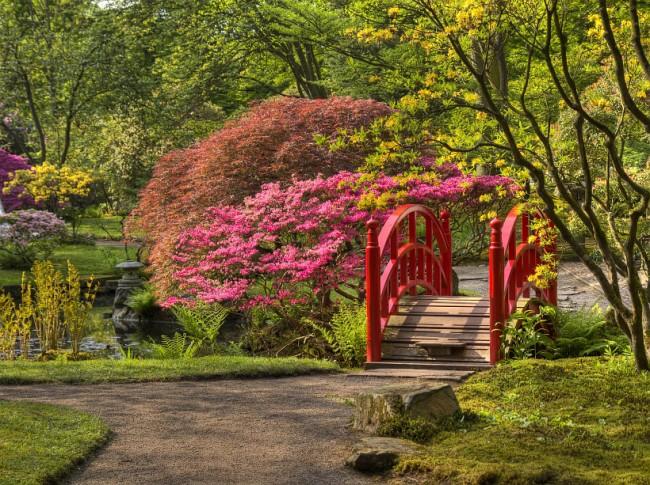Спирея японская часто используется как одно из базовых растений в дизайне азиатских ландшафтов