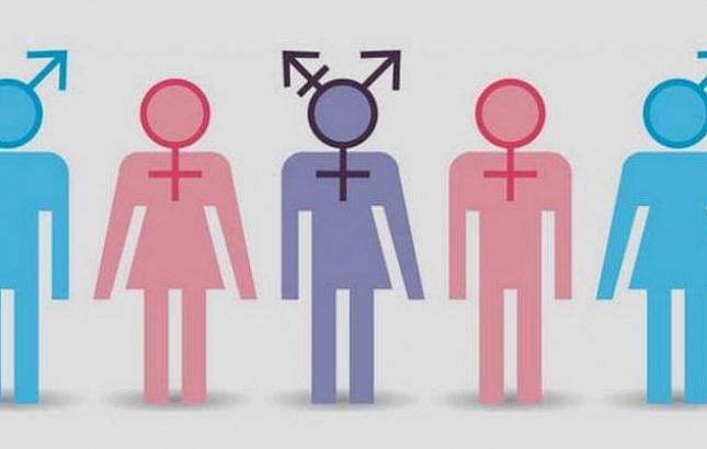 ПАСЕ рекомендовала Госдуме составить делегацию с учетом шести полов