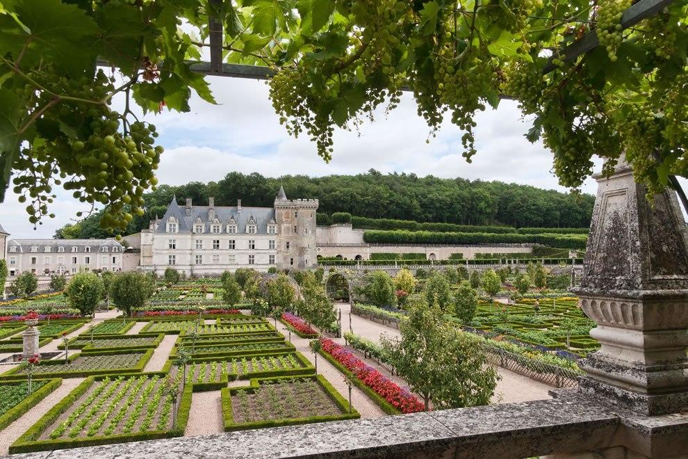 Сад любви в Шато де Вилландри