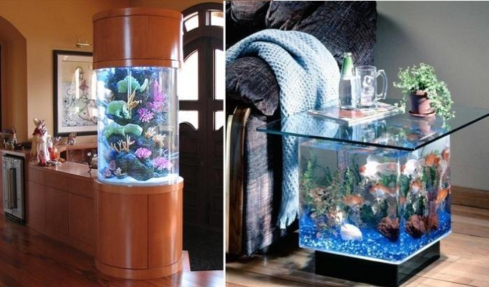 Самые неожиданные места для аквариумов