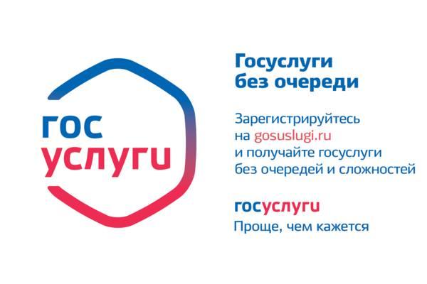 Получение муниципальных услуг через Единый Портал государственных услуг