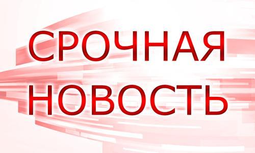 Медведев представил Путину с…
