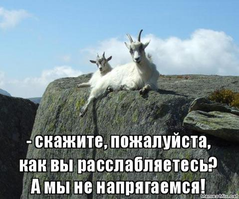 Не перенапрягая жил... Д. А. Пригов