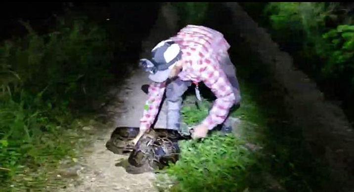 Мужчина голыми руками спас аллигатора от питона