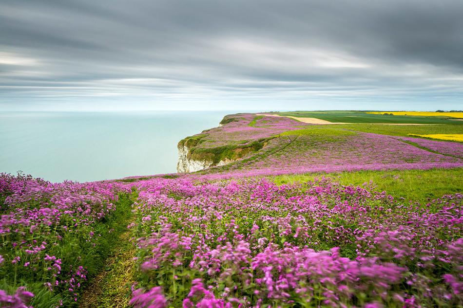 20 фантастически прекрасных снимков с британского конкурса пейзажных фотографов