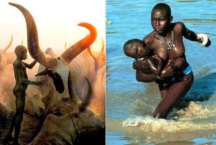 Самобытная народность динка: древние африканские скотоводы