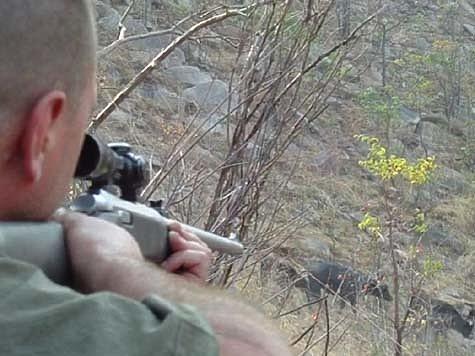 Две недели на охоте в Зимбабве