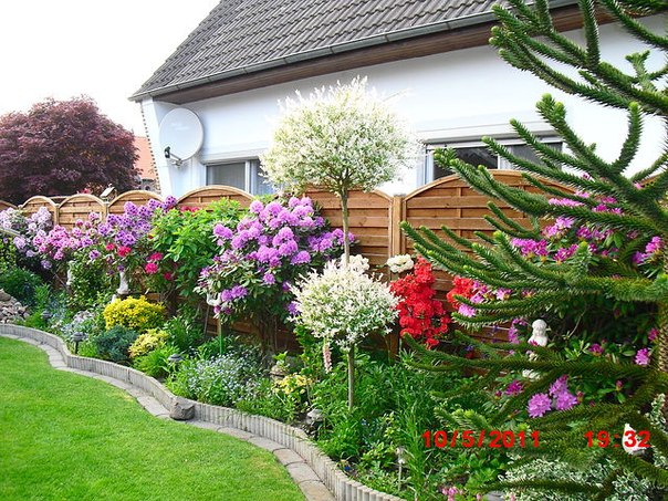 Как красиво рассадить цветы на участке и