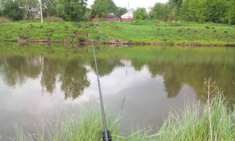 Рыбалка на карася в деревенском пруду или червячок на крючок