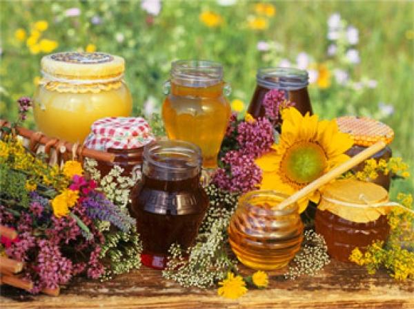 Мед для сохранения здоровья и молодости