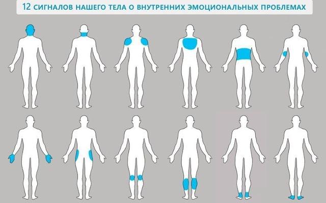 12 сигналов нашего тела о вн…