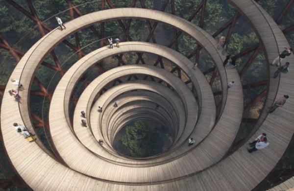 Увидеть лес с высоты, гуляя по спиральной тропе