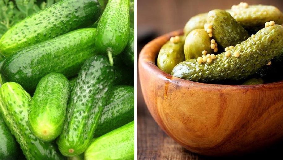 Малосольные огурчики: самые вкусные рецепты