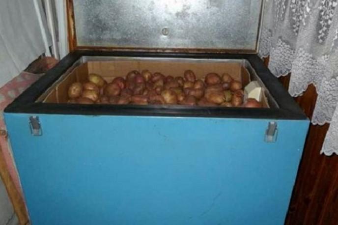 Хранение овощей на балконе зимой своими руками 28