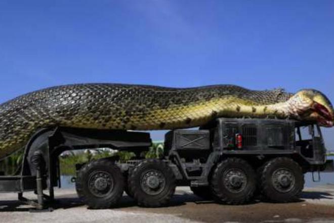 Cамая большая змея в мире: е…