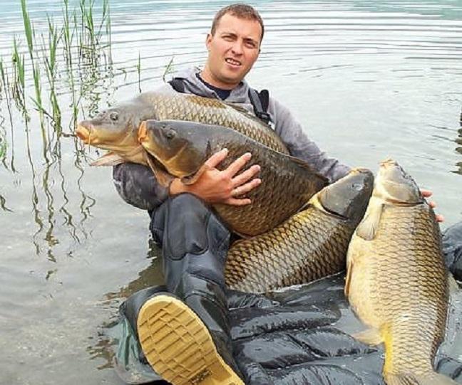 рыбалка на ищейку