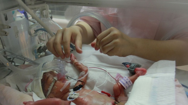 ВСамарканде клиника торговала недоношенными младенцами, часть сжигали