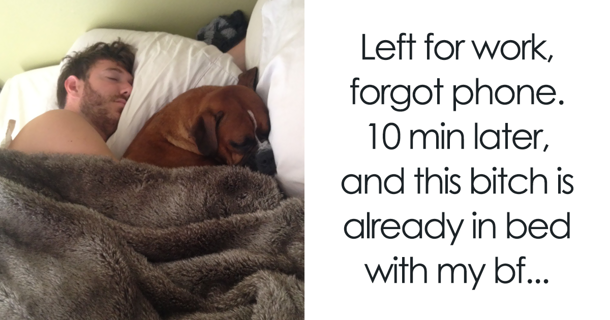 30+ Shameless Pets That Stole Owner's Partner And Didn't Even Feel Sorry