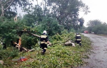 Более 1,5 тыс человек остались без света на Ставрополье из-за урагана