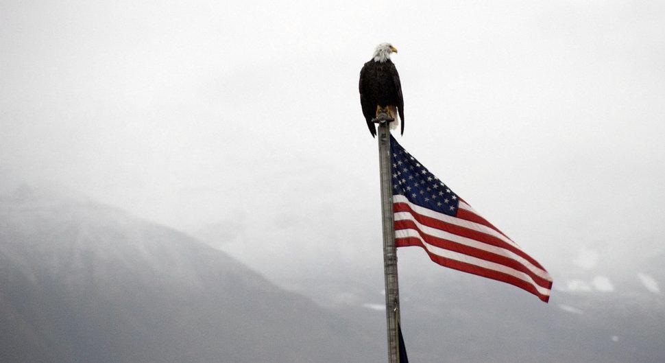 Чистосердечное признание Запада: мир прозрел?