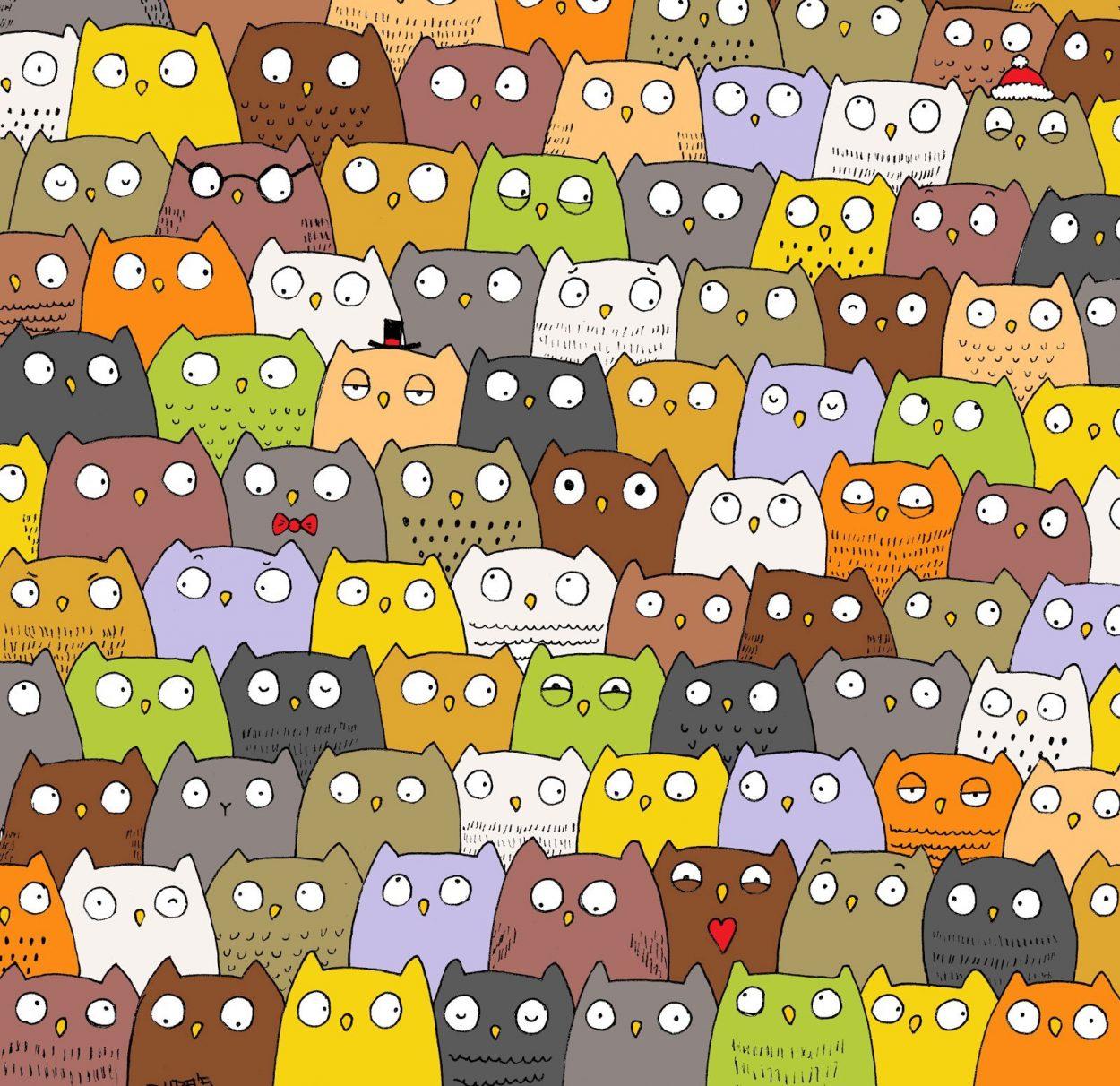 Найдите кота среди сов