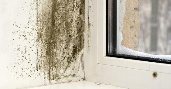 Промерзает стена квартире что делать