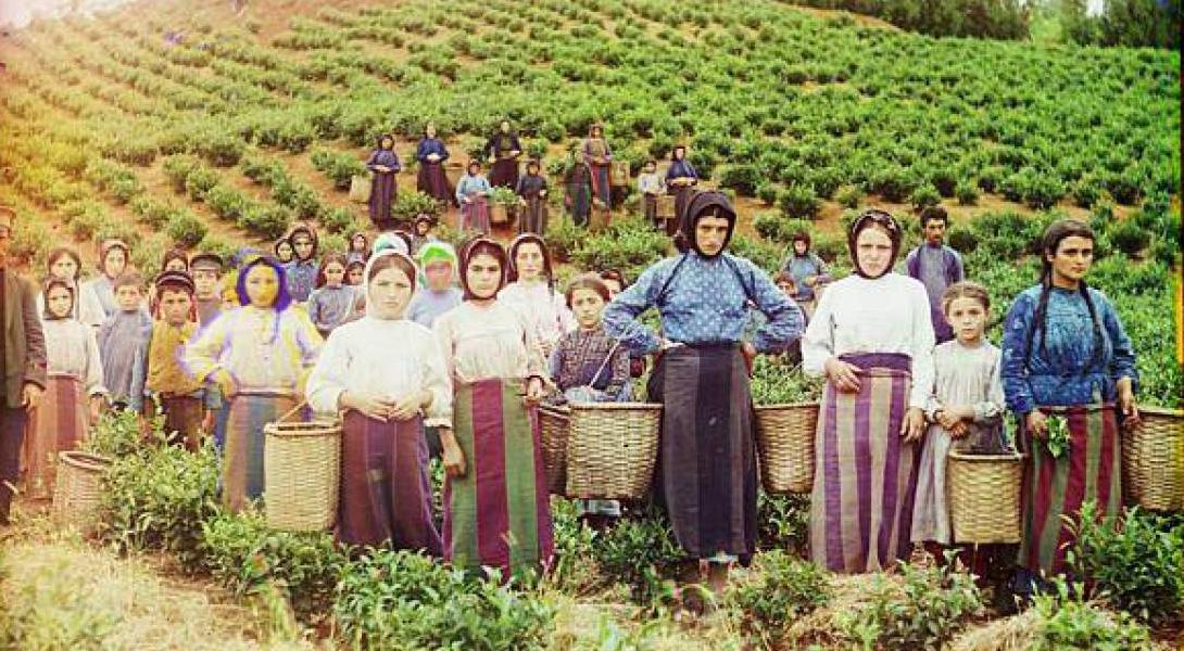 Россия начала XX века в цвете