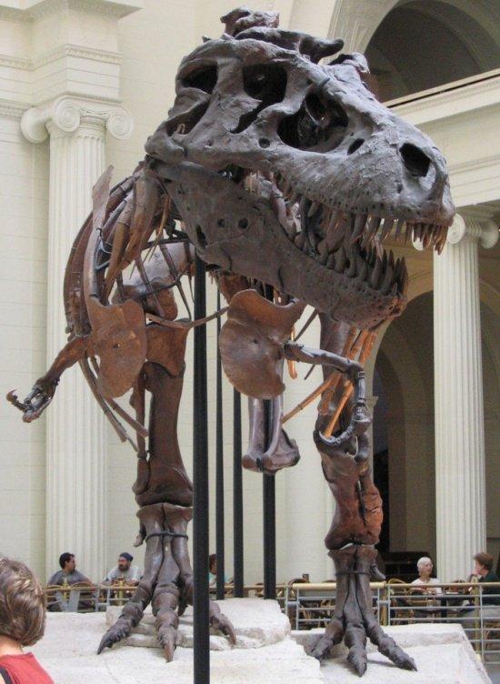 Сколько стоят динозавры в наши дни?