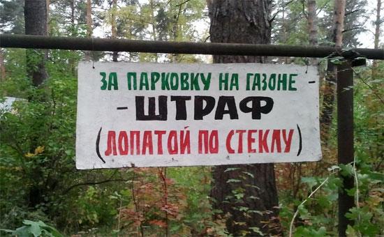 Чем грозит парковка на газоне в Санкт-Петербурге
