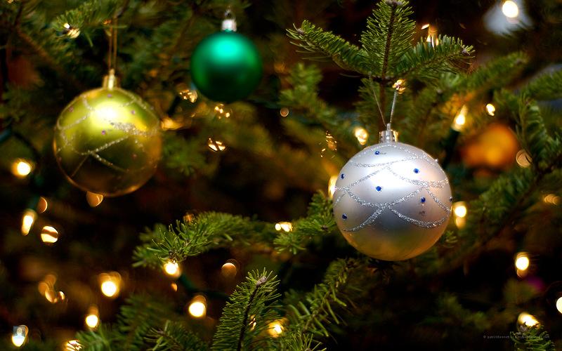 Как сделать, чтобы новогодняя елка долго стояла