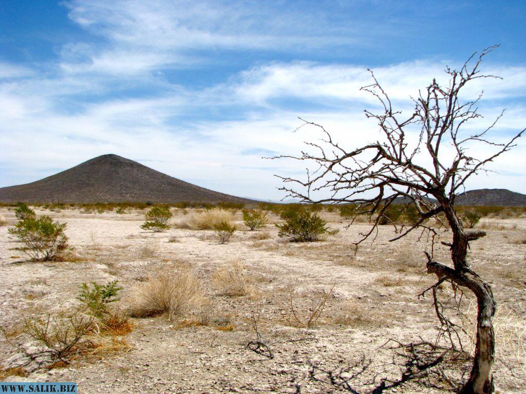 Нераскрытые тайны Мексики. Зона молчания - зона пришельцев