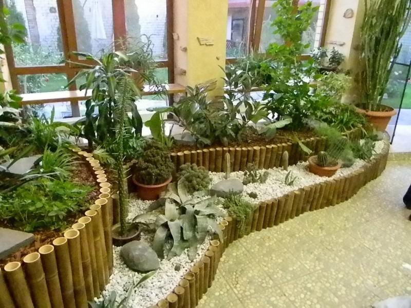 Создаем зимний сад