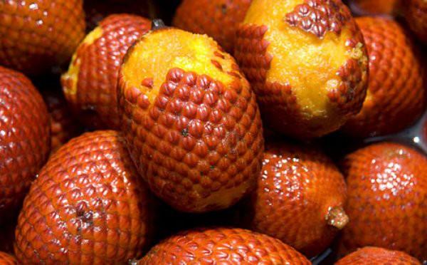Змеиный фрукт еда, продукты