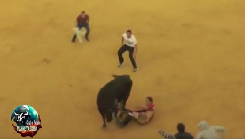 Во время корриды бык полностью раздел испанца ниже пояса