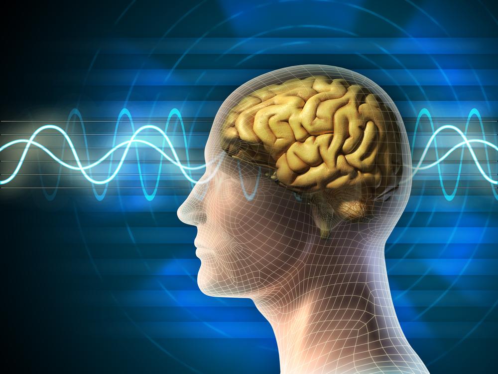 Зарядка для мозга – нейробика