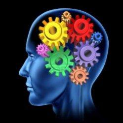 6 продуктов, которые сделают из вас гения