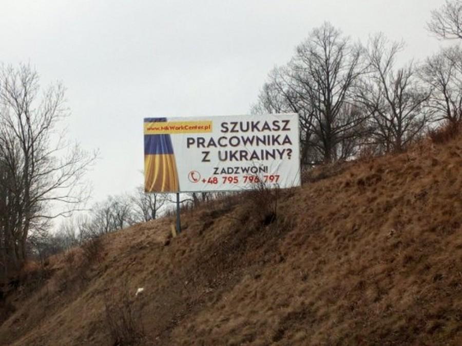 Украинцев продают на Западе как скот на базаре – СМИ