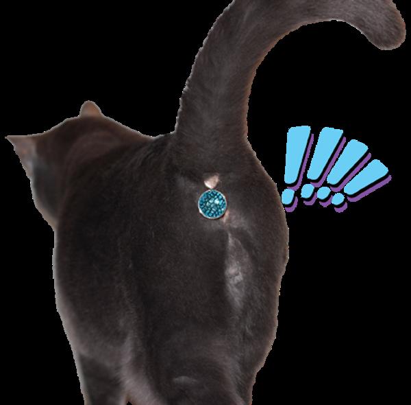 Сверкающий аксессуар для кошачьего хвоста