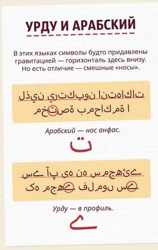 Как за одну минуту научиться отличать восточные языки друг от друга