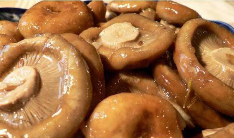 Как солить грибы пошаговый рецепт с фото