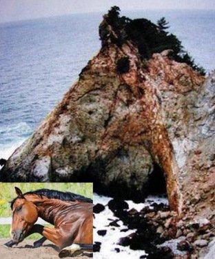 Скальные образования, напоминающие животных (10 фото)