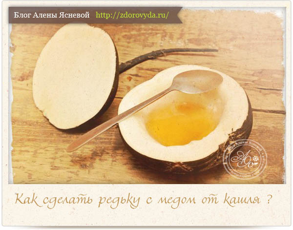 Редька с мёдом рецепт
