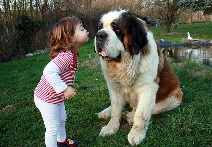 Поцелуемся? дружба, ребенок, собака