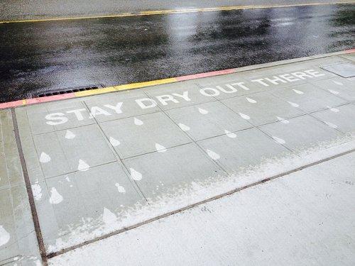 Искусство дождя: рисунки, которые проявляются, когда идёт дождь (6 фото + видео)